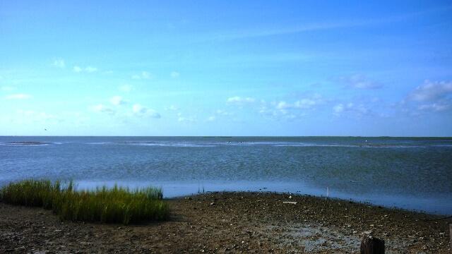 Rollover Bay elizabeth
